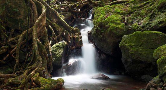 Masoala Waterfall